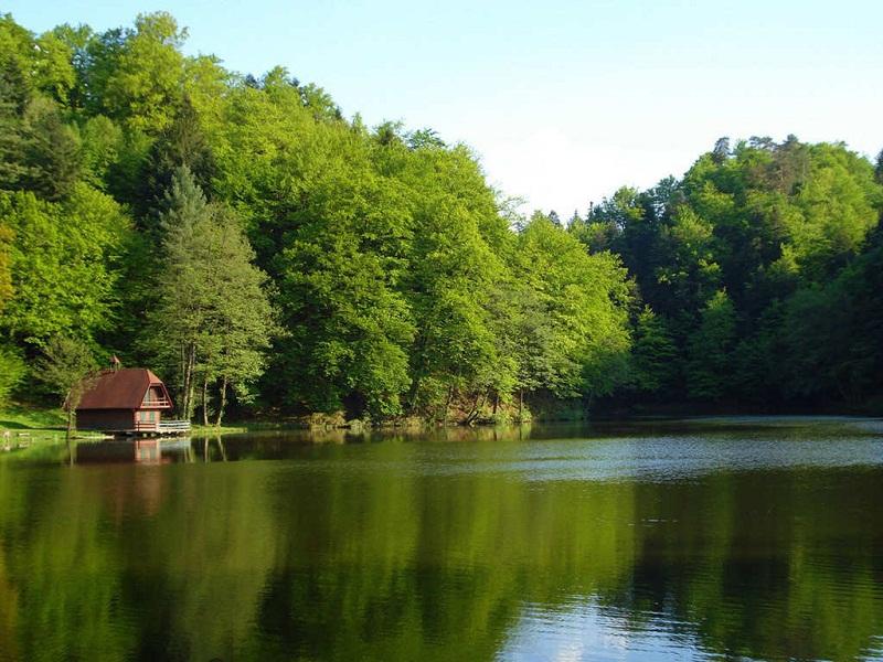 nature-reflections-photos- (9)