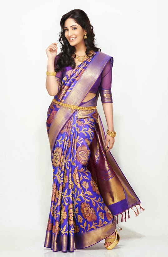 yami-gautum-photoshoot-in-saree- (8)