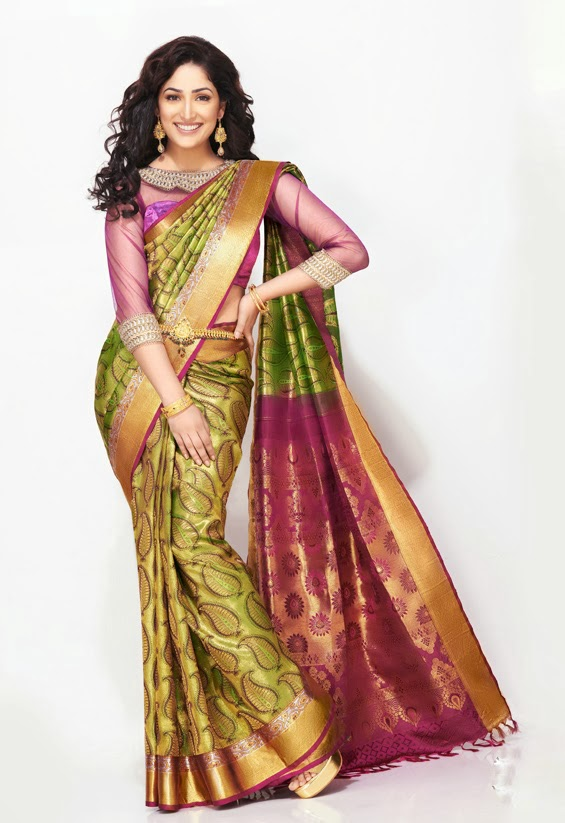 yami-gautum-photoshoot-in-saree- (9)