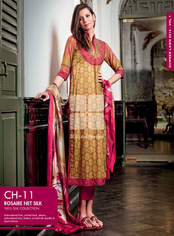 gul-ahmed-rosaire-net-silk-collection-2014 (3)