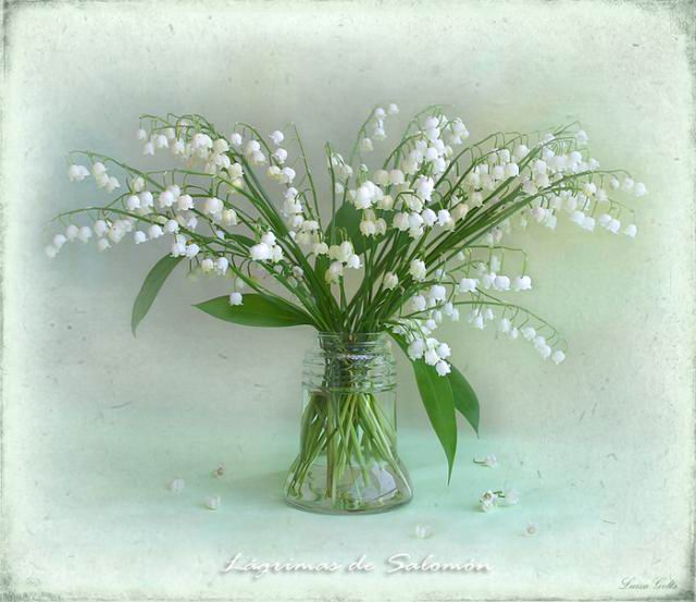 flowers-paintings- (7)