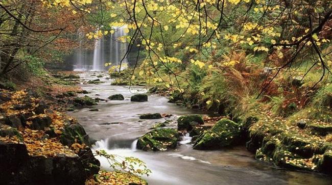 natural-waterfalls-18-photos- (11)