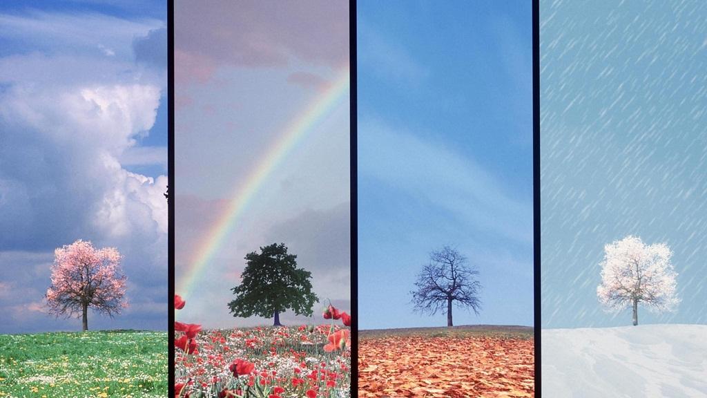 beautiful nature wallpapers 15 photos