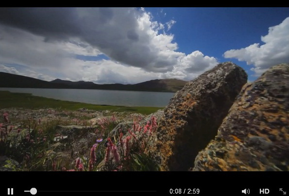 beautiful-deosai-pakistan-video