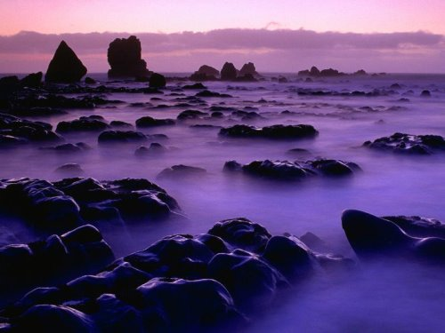 new-zealand-30-photos- (12)