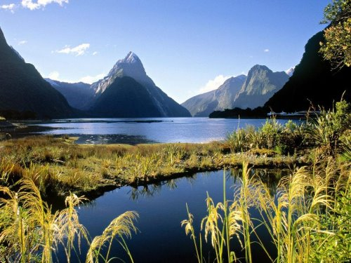 new-zealand-30-photos- (29)