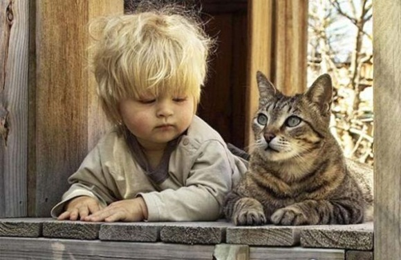 babies-and-cats- (17)