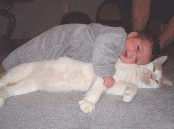 babies-and-cats- (24)