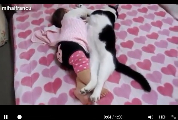 babies-and-pets-sleeping-
