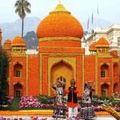 Orange Festival