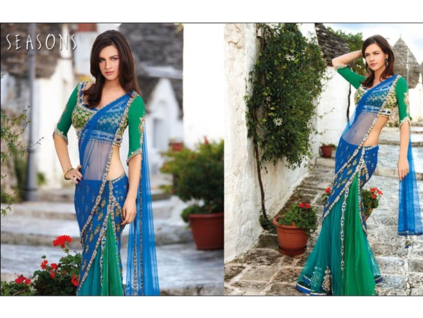 designer-saree-collection-2014-by-seasons- (10)