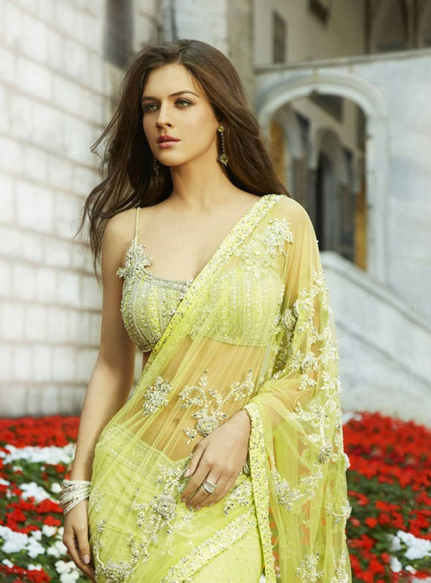 designer-saree-collection-2014-by-seasons- (14)
