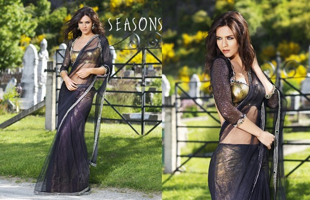 designer-saree-collection-2014-by-seasons- (3)