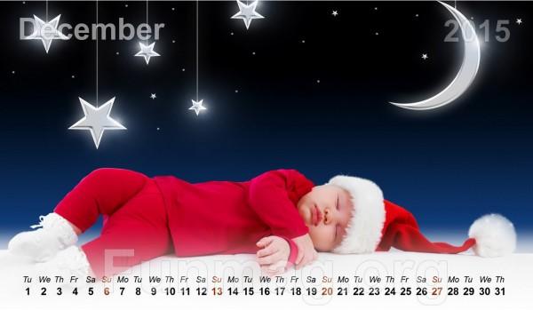 babies-calendar-2015- (12)
