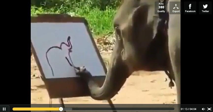 elephant-drawing-elephant-video-