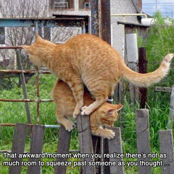 funny-awkward-situation- (15)