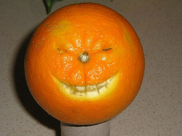funny-fruits-36-photos (29)