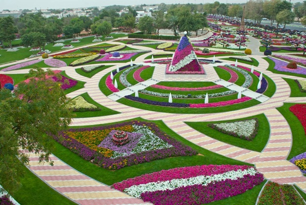 al-ain-paraidse-beautiful-flowers-park- (11)
