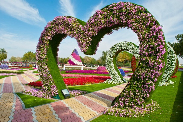 al-ain-paraidse-beautiful-flowers-park- (14)