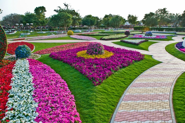 al-ain-paraidse-beautiful-flowers-park- (4)