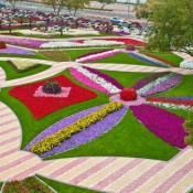 Al Ain Paradise – Beautiful Flower Park