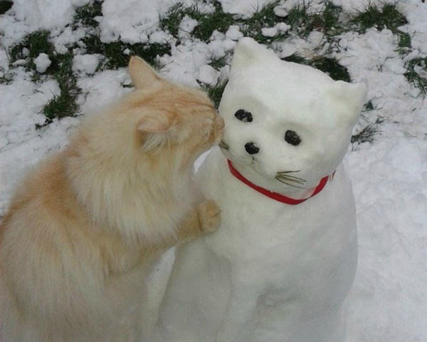 funny-snowman- (8)