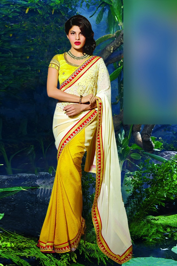 jacqueline-fernandez-saree-collection- (1) (49)
