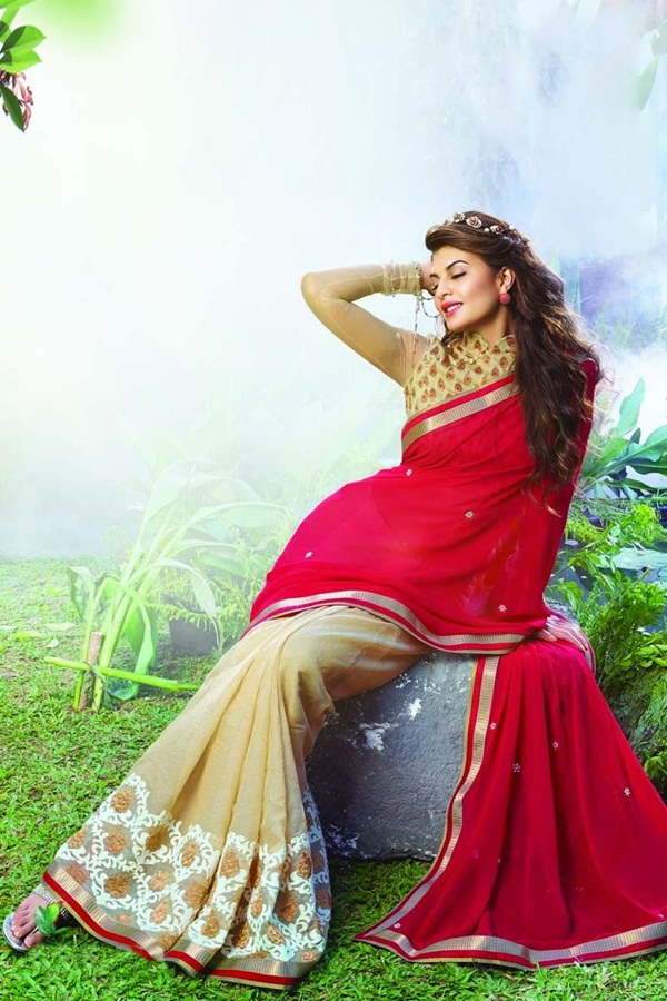 jacqueline-fernandez-saree-collection- (1) (8)