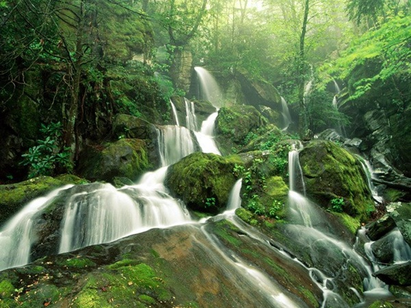 beautiful-waterfall-14-photos- (8)