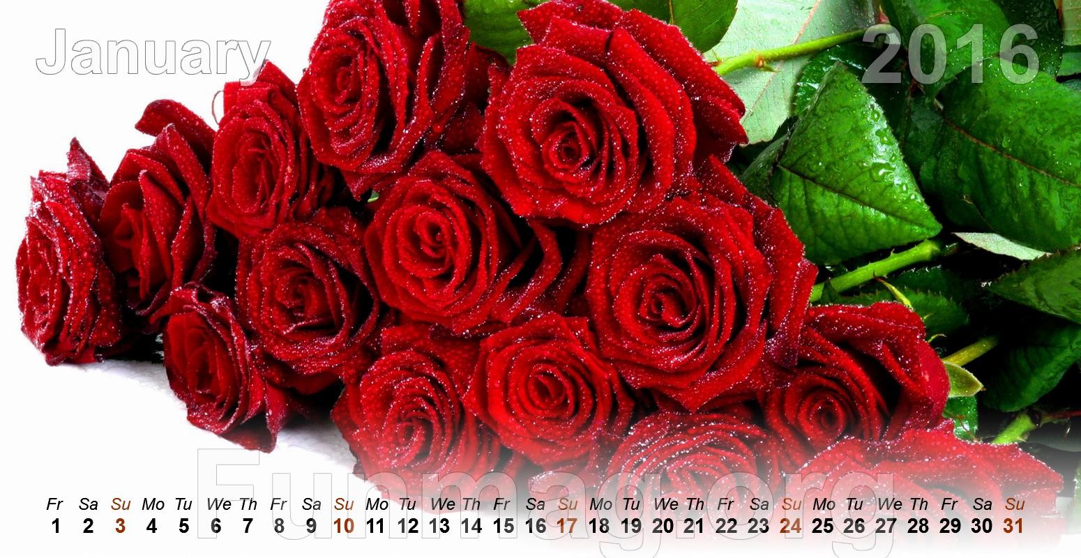 Beautiful Flowers Calendar 2016 Funmag