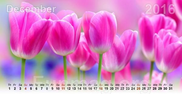 flowers-calendar-2016- (12)