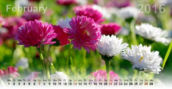 flowers-calendar-2016- (2)