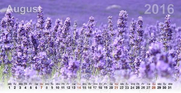 flowers-calendar-2016- (8)