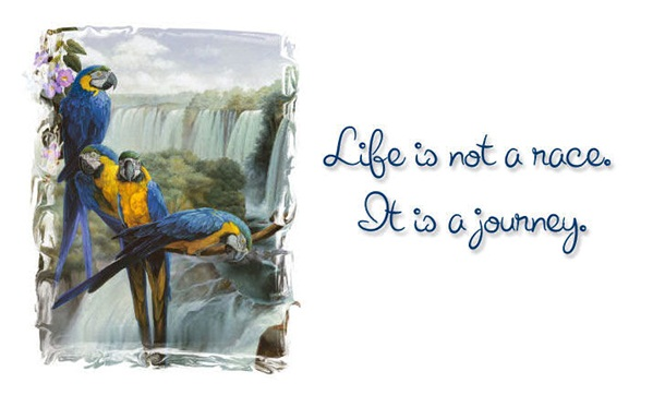 life-is-a-journey-quots-about-life- (1)