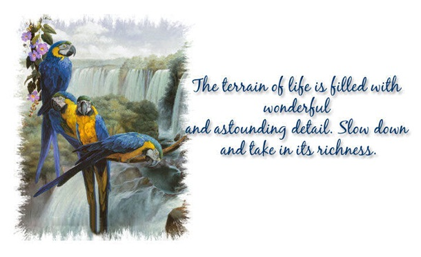 life-is-a-journey-quots-about-life- (6)