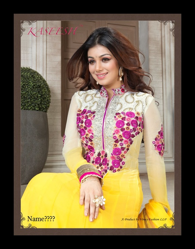 ayesha-takia-indian-anarkali-frocks- (2)