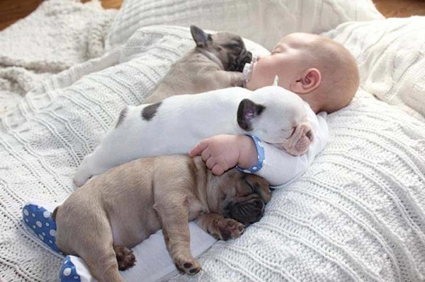 cute-babies-with-puppies- (3)