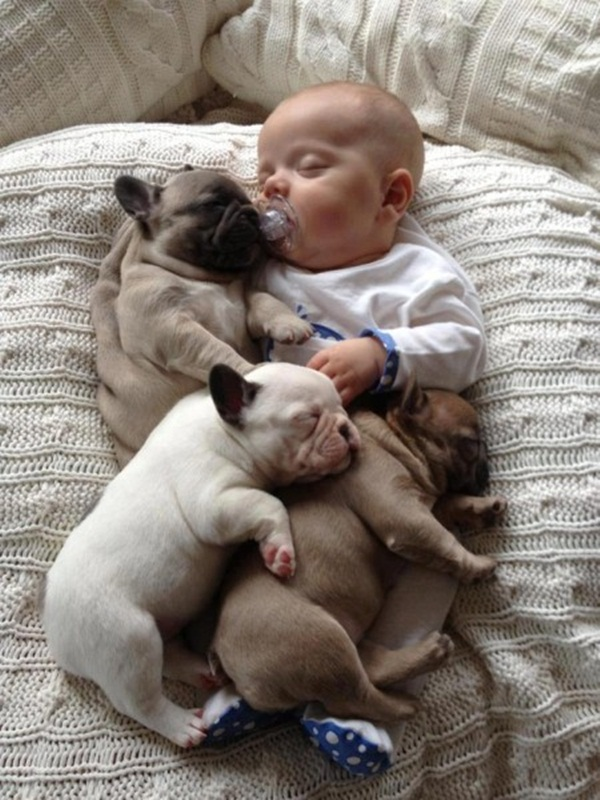 cute-babies-with-puppies- (4)