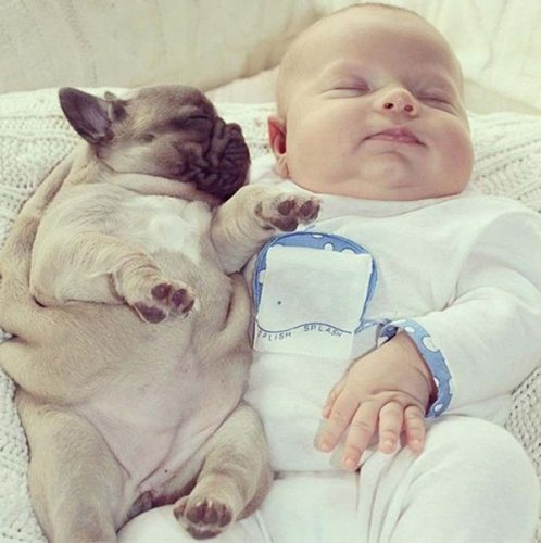 Cute Babies With Puppies