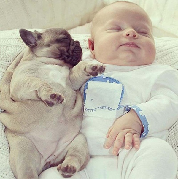 cute-babies-with-puppies- (9)