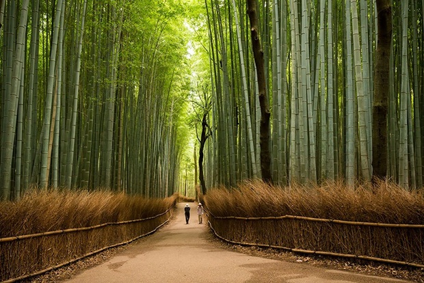 beautiful-places-to-visit-in-japan- (1)