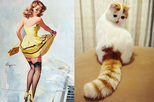 cats-imitate-the-girls- (1)