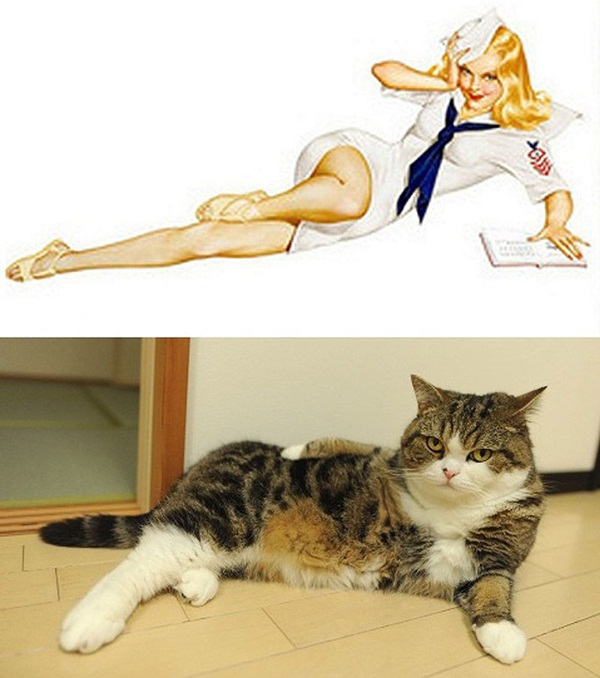 cats-imitate-the-girls- (3)