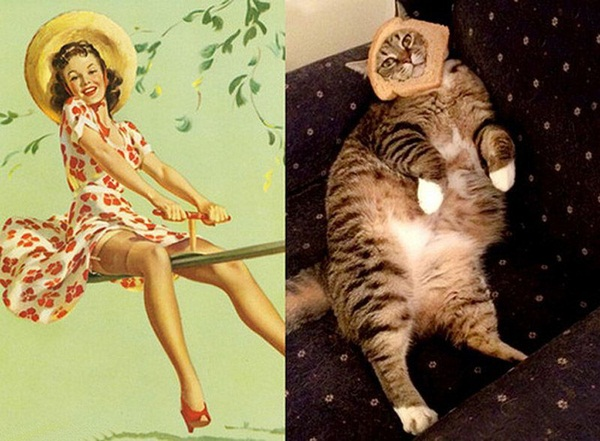 cats-imitate-the-girls- (8)