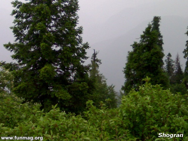 tour-to-northern-areas-of-pakistan- (27)