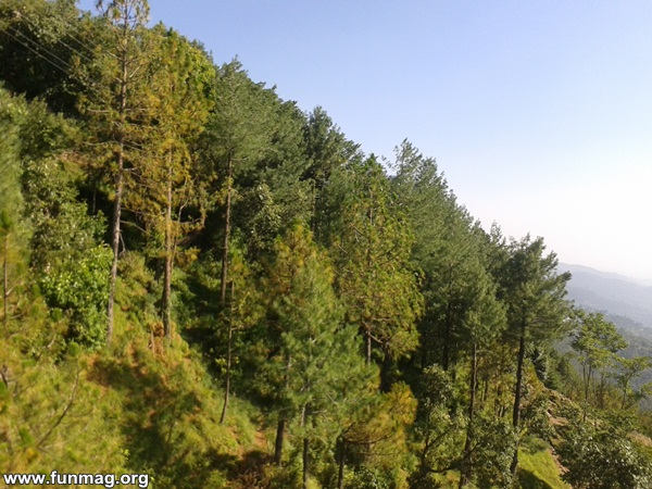 tour-to-northern-areas-of-pakistan- (40)