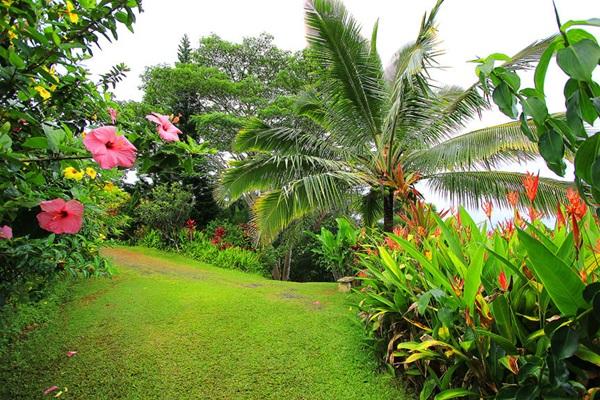 maui-gardens- (17)
