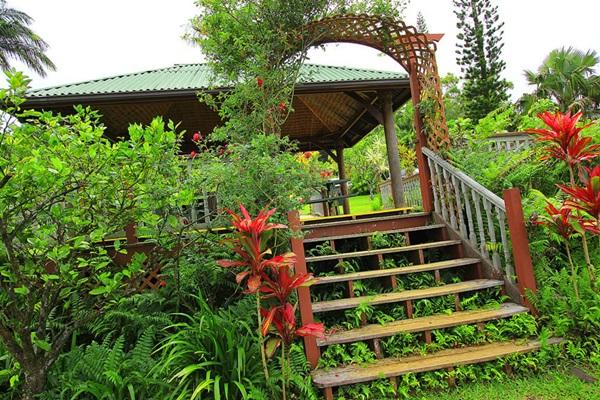 maui-gardens- (27)