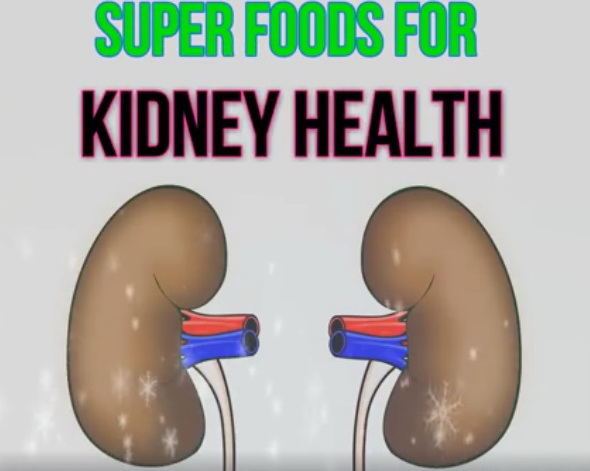 super-foods-for-kidney-health-