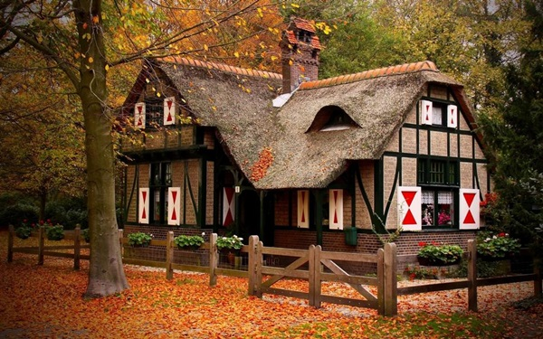 wood-house- (1)